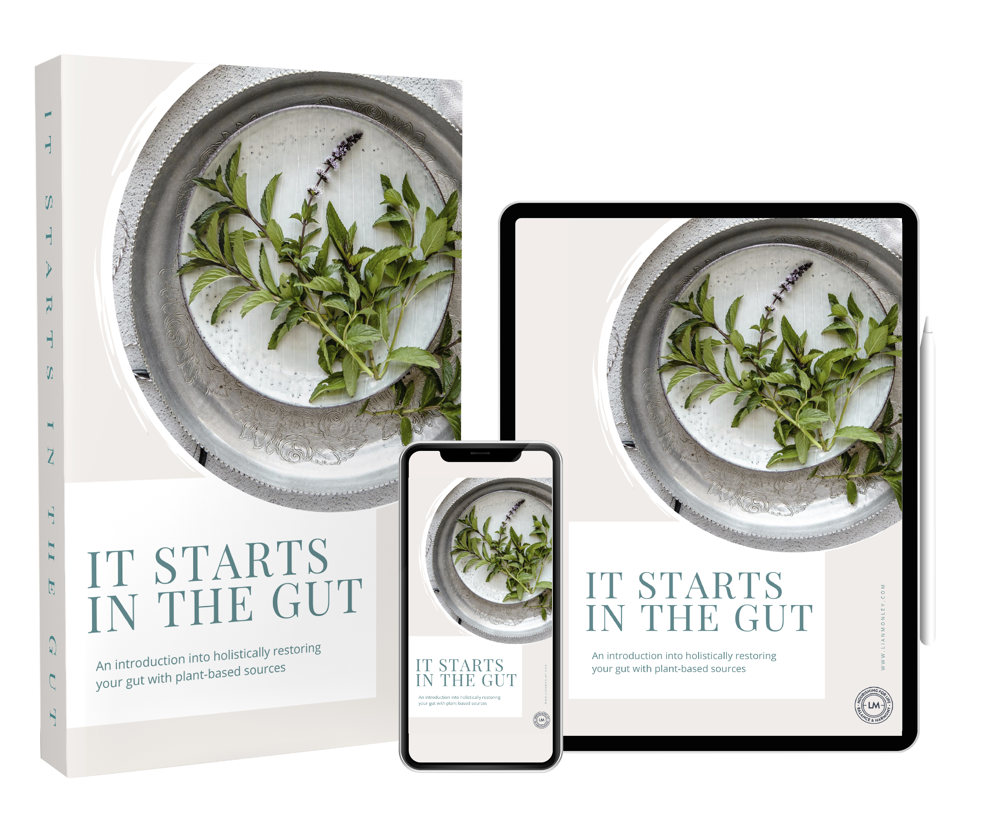 It Starts in the Gut E-book