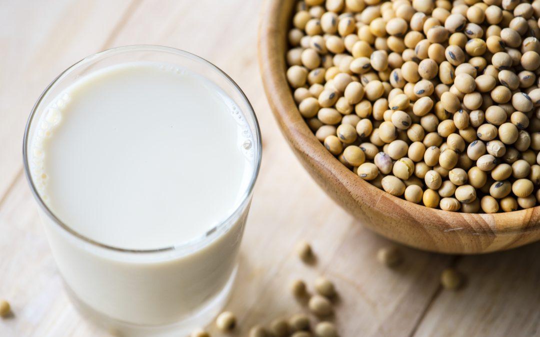Fresh nutritional drink Soya Milk